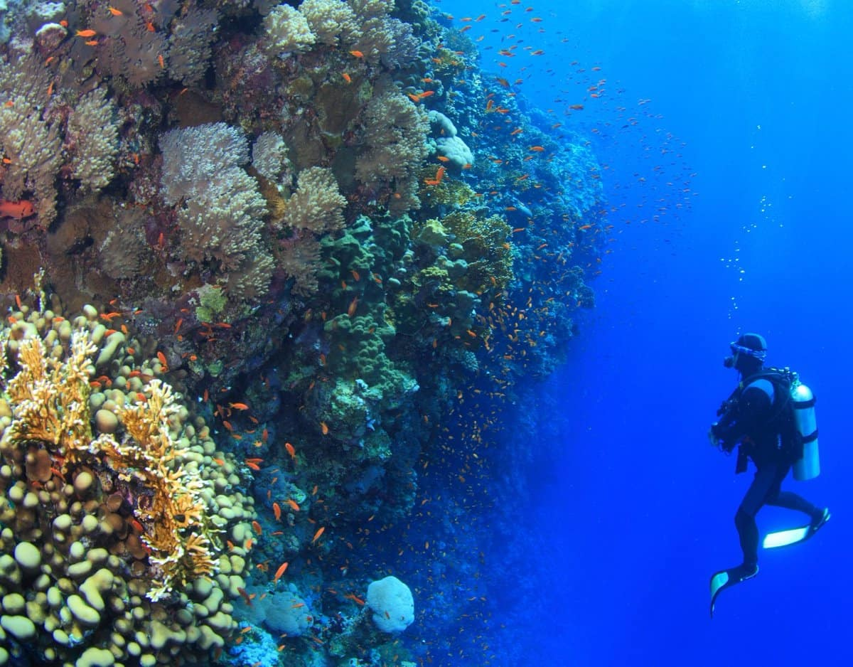 Best Places For Scuba Diving