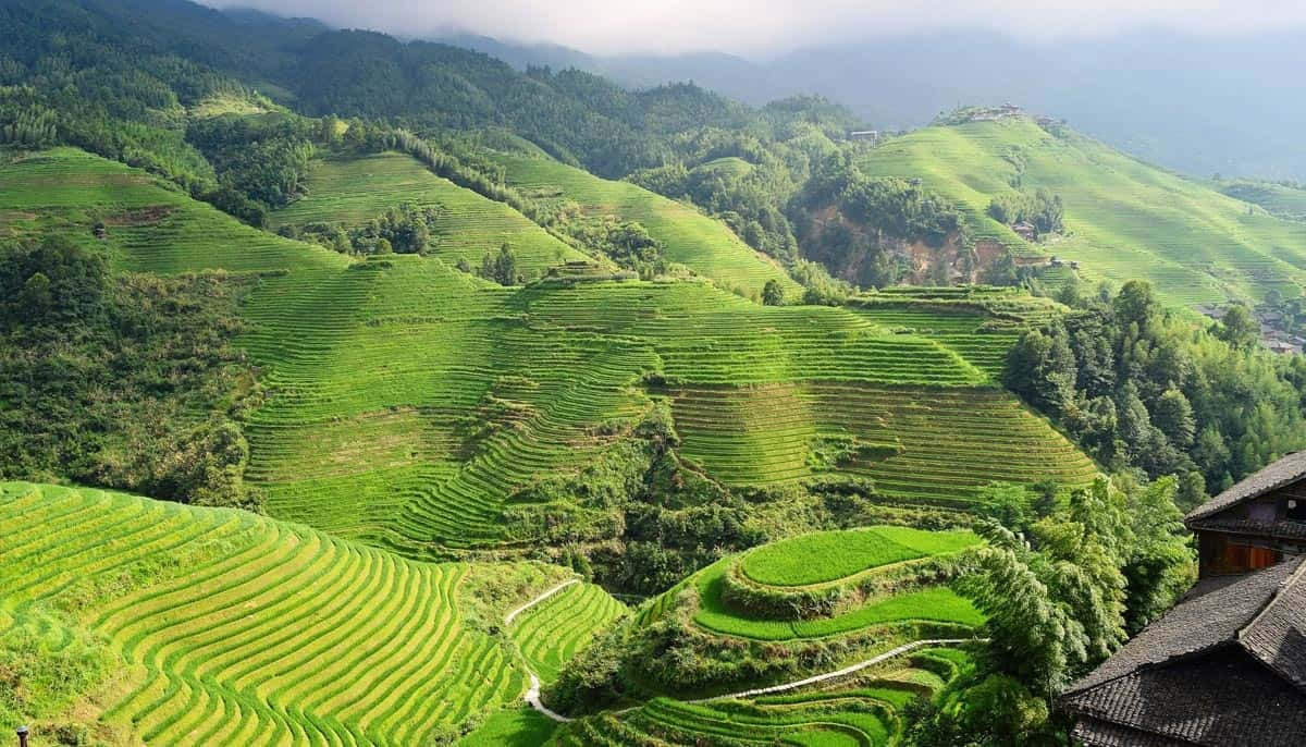 ifugao-rice-terraces- Places To Visit In Southeast Asia