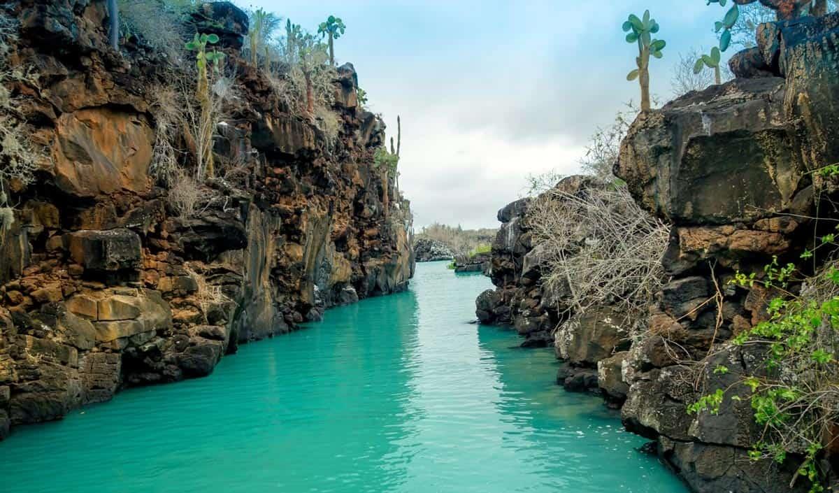 galapagos islands latin america